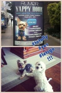 HappyHour_Doggies