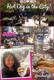 Nisha_Style_Hot_Dog_NYC